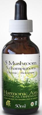 MushroomTincture